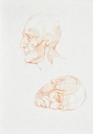 Dariusz KALETA Dariuss (ur. 1960), Szkice głowy z prawego i lewego profilu