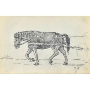 Stanisław ŻURAWSKI (1889-1976), Koń w zaprzęgu, 1921