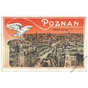 [ORZEŁ] Poznań. Widok ogólny