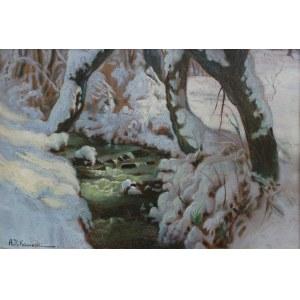 Alojzy Roman Kawecki, Zimowy potok