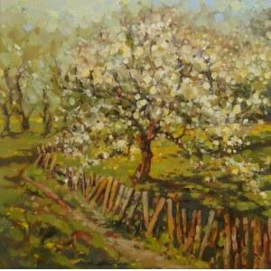 Renata Szuryga, Czas kwitnącej jabłoni, 2021