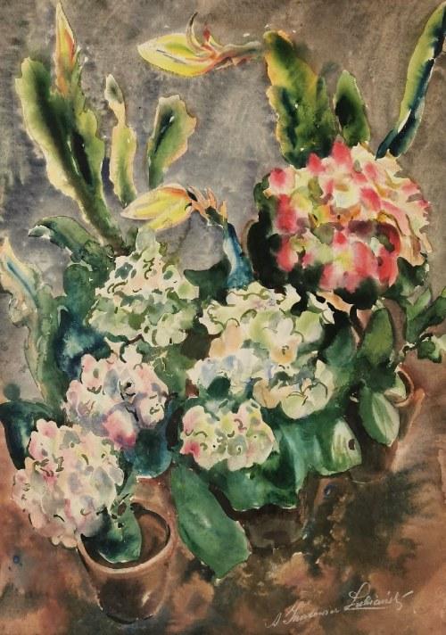 Adolf ŁUBIAŃSKI-INATOWICZ (1892-1971), Hortensje