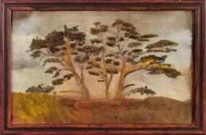 Franciszek Roman RUTKOWSKI (1892-1940), Studium drzew, ok. 1915