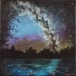 Marcin GLINKA, Gwiazdy na niebie, nenufary na wodzie, 2020