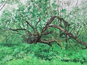 Pervin Ece Yakacik Leczycki (ur. 1991), Drzewo Podzielone, 2020