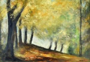 Irena WEISS – ANERI (1888-1981), Pejzaż jesienny