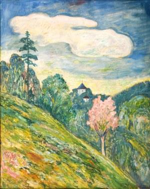 Zofia SZYSZKO-BOHUSZ(1892-1973), Zamek w Ojcowie