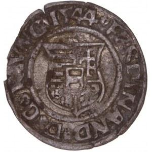 House of Habsburg - Ferdinand I. (1521-1564) Denar 1544