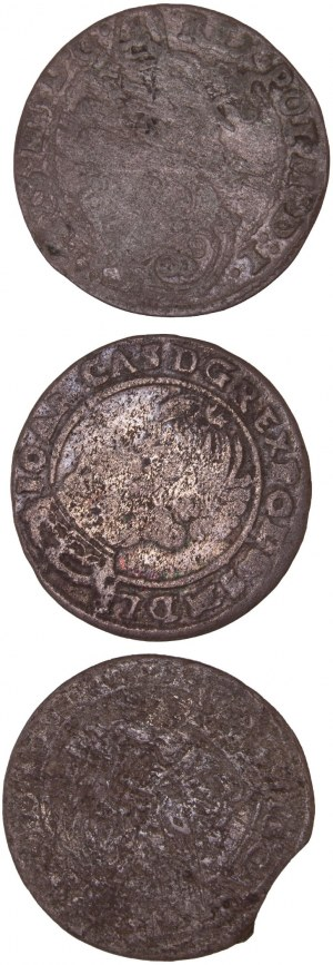 Poland – Sigismund III Vasa / John II Casimir – 6 Groschen LOT – 3 pcs