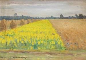 Błażej Iwanowski (1889 Jabłonna-1966 Warszawa), Kwitnace pole