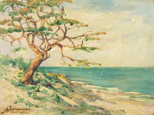 Leopold Jarmuszewski (XIX / XX w.), Pejzaż nadmorski - Hel, 1924 r.