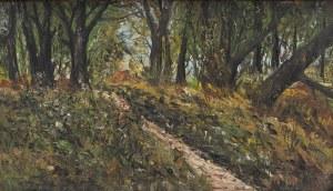 Jerzy Haponiuk(1946-2007),Droga w lesie,1979