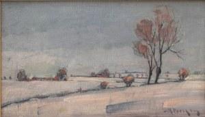 artysta nierozpoznany ,Pejzaż zimowy,