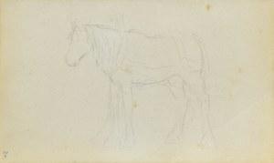 Jacek MALCZEWSKI (1854-1929), Szkic konia stojącego w zaprzęgu ukazanego z lewego boku