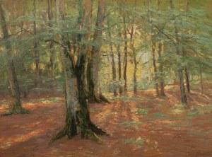 Carl Rathjen (1855-1919), Las