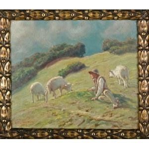 Zefiryn ĆWIKLIŃSKI (1871-1930), Baca na hali (1928)