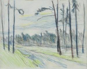 Stanisław KAMOCKI (1875-1944), Droga w lesie, ok. 1908