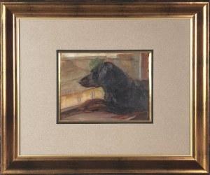 Wojciech WEISS (1875-1950), Azorek - Pies Wojciecha Weissa spoglądający na ul. Józefińską (?), ok. 1900