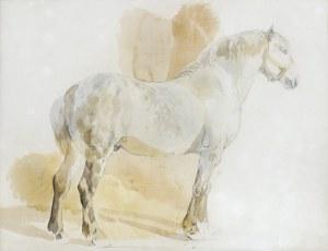 Michałowski Piotr, PERSZERON, OK. 1845