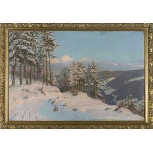 Paul WEIMANN, Pejzaż zimowy