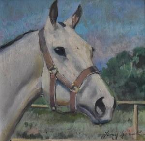Jerzy KOSSAK (1886-1955), Głowa konia