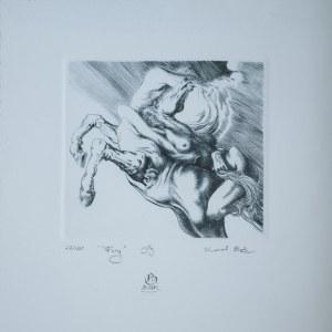 BĄK Karol, Fury (23/100), 1989