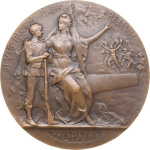France Military Preparation Award Medal, 1911