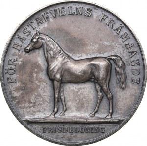 Sweden medal For the development of horse breeding