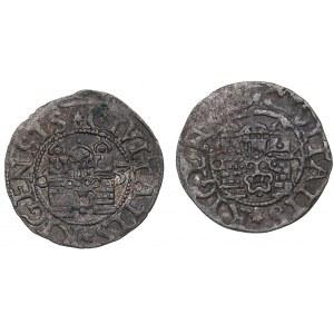 Riga Free City schilling 1563, 1564 (2)