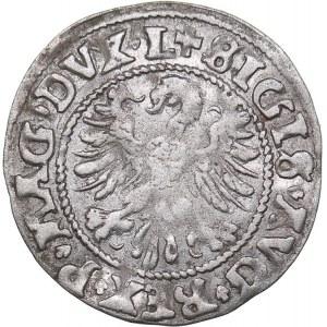 Lithuania 1/2 grosz 1546 - Sigismund II Augustus (1545-1572)