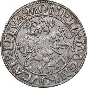 Lithuania 1/2 grosz 1557 - Sigismund II Augustus (1545-1572)