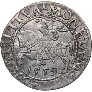 Lithuania 1/2 grosz 1559 - Sigismund II Augustus (1545-1572)