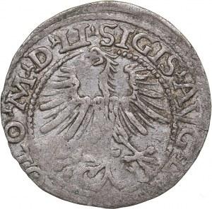 Lithuania 1/2 grosz 1564 - Sigismund II Augustus (1545-1572)