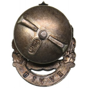 Estonia badge Estonian Fire Brigade Association