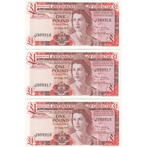 Gibraltar 1 pound 1979 (3 pcs)