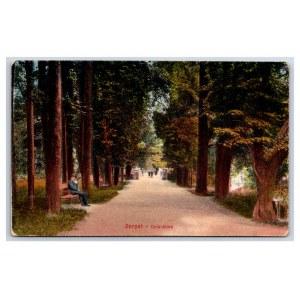Postcard Estonia Dorpat (Tartu) Toomemägi