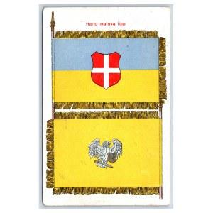 Postcard Estonia Defence league Harju district banner