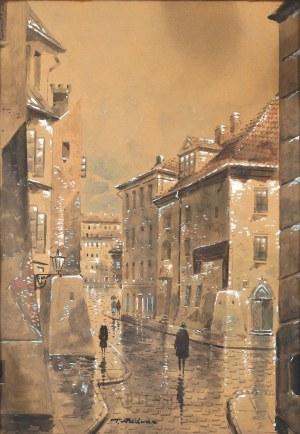 Tadeusz Radwan (1 poł. XX w.), Widok z ulicy Wąski Dunaj na Rynek Starego Miasta w Warszawie