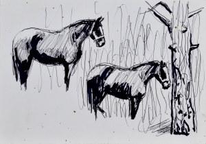 Ludwik MACIĄG (1920-2007), Szkice stojących koni przy drzewie