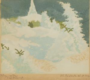 Włodzimierz BIELECKI (1896-1943), Tatry - Noc