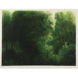 Iwo ZANIEWSKI (ur. 1956), Wnętrze lasu, 1982