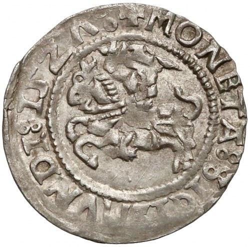 Zygmunt I Stary, Półgrosz Wilno 1527