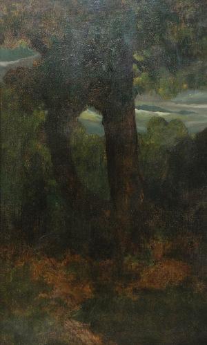 Ludomir BENEDYKTOWICZ (1844-1926), Drzewa, ok. 1888