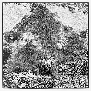 Iwona CUR (ur. 1978), Ciraetus gallicus, 2001
