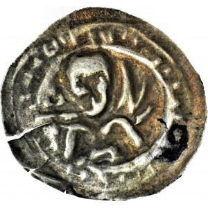 RRR-, Mieszko III Stary 1173-1202, Gniezno, Brakteat łaciński, Książę z nietypową gałązką na prawym ramieniu, R5/R8?