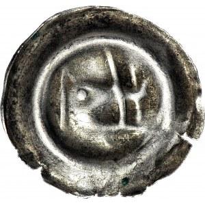 Śląsk, Świdnica- miasto, Brakteat XV w., Świdnica, Głowa dzika