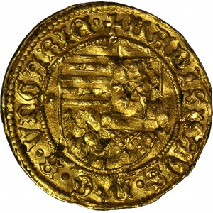 RR-, Węgry, Władysław V 1453-1457, Goldgulden 1455-6, Nagybanya, RZADKI