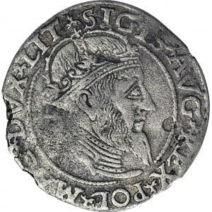 R-, Zygmunt II August, Grosz na stopę litewską 1559, Wilno