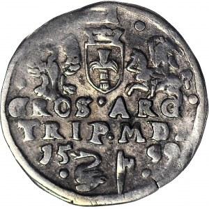 RR-, Zygmunt III Waza, Trojak 1599, Wilno, Łabędź, R4