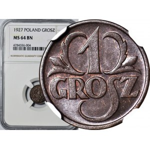 1 grosz 1927, menniczy, kolor BN